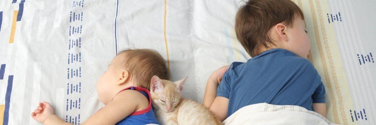 Sacos de Dormir para Bebés y Niños